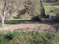 Teren Intravilan de Vanzare in Valea Doftanei, 19.000 €